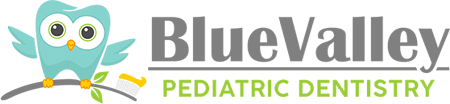 Blue Valley Pediatric Dentistry in Overland Park, KS